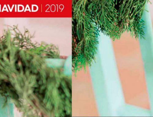 Feinpra Catálogo Navidad 2019, cientos de ideas para decorar de Navidad tu hogar